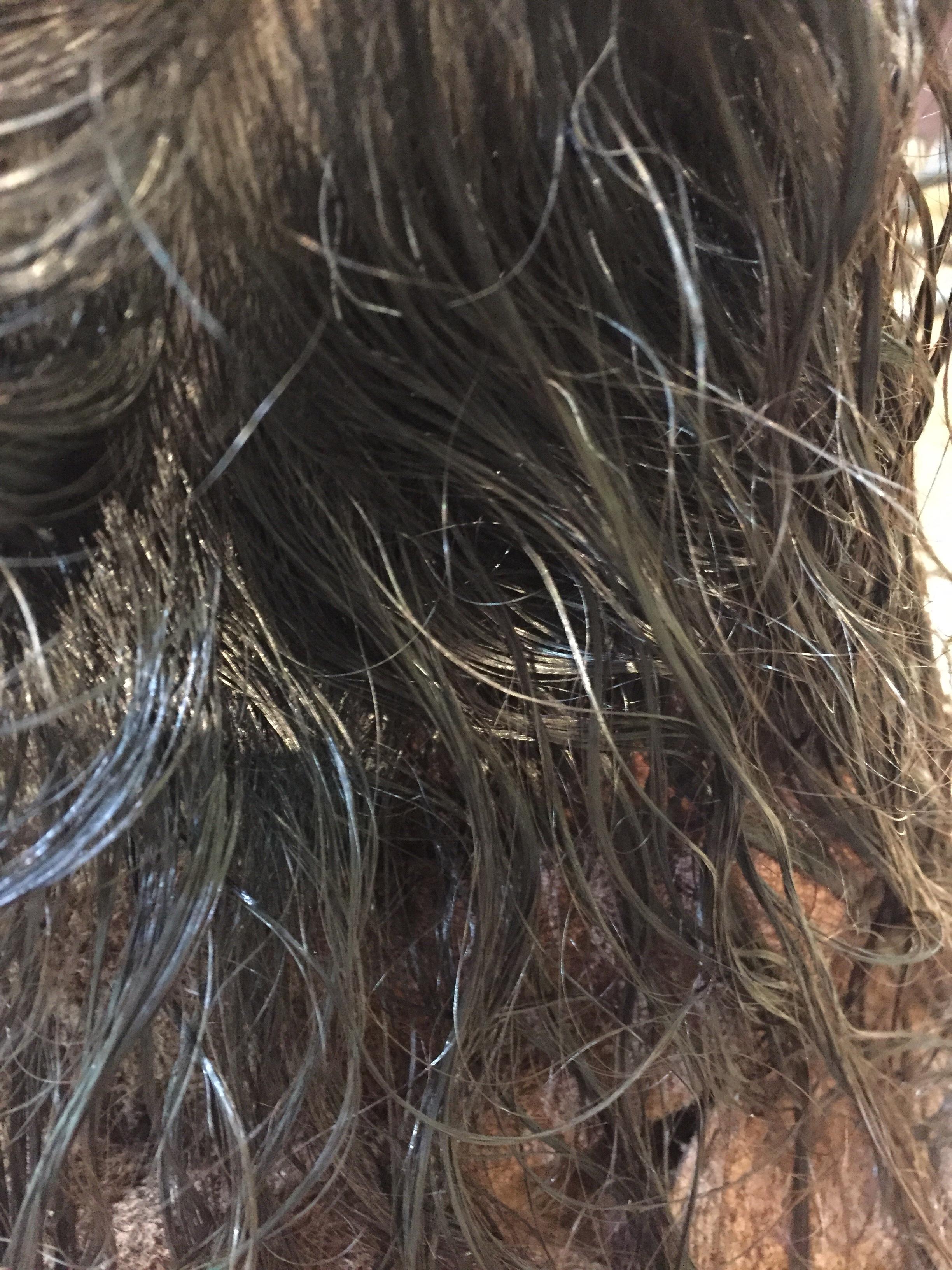 縮毛矯正と白髪染めの繰り返し